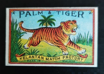 Palm and Tiger
