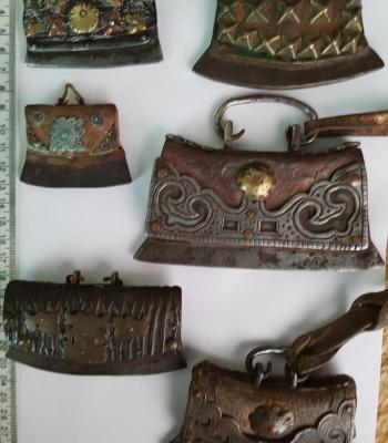 Six well-preserved Chuckmucks