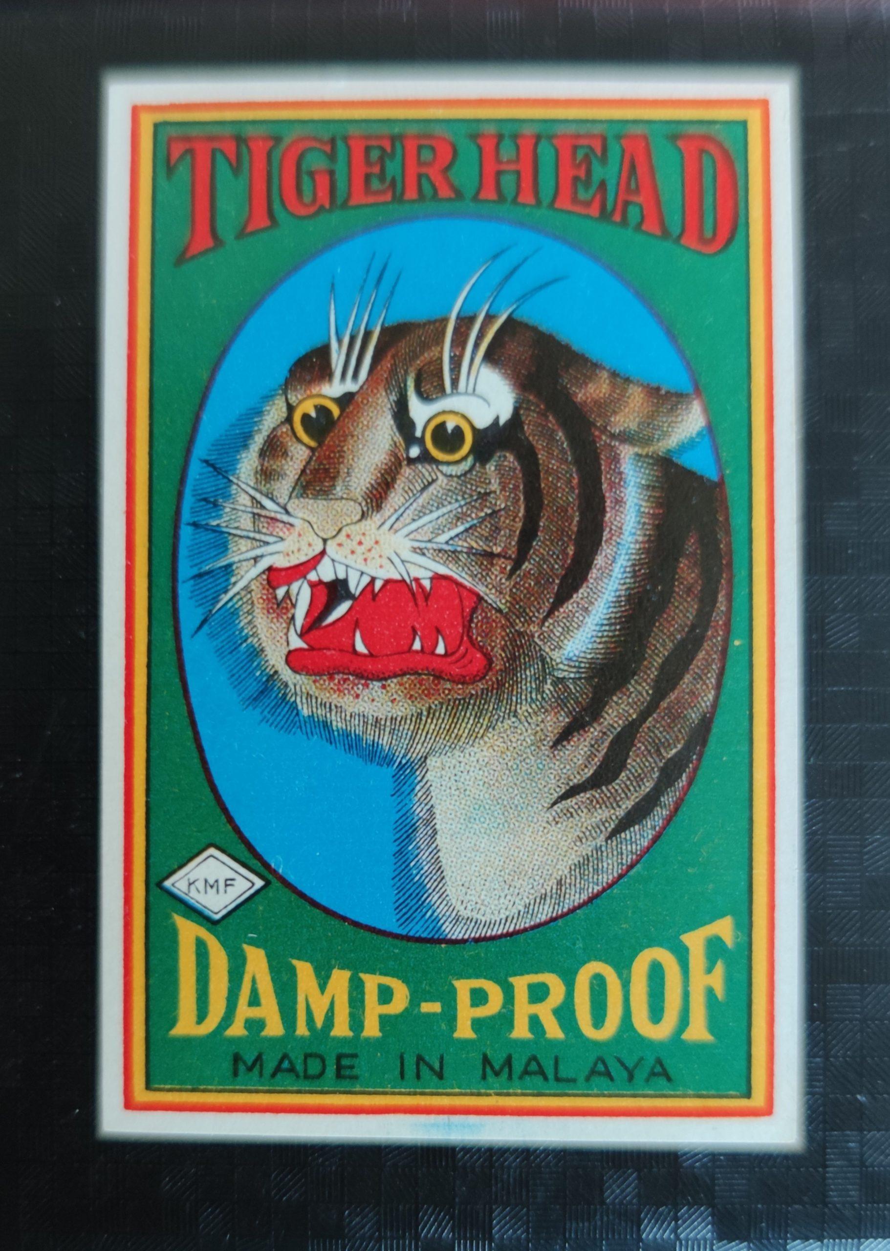 Tiger Head, 35 x 54 mm