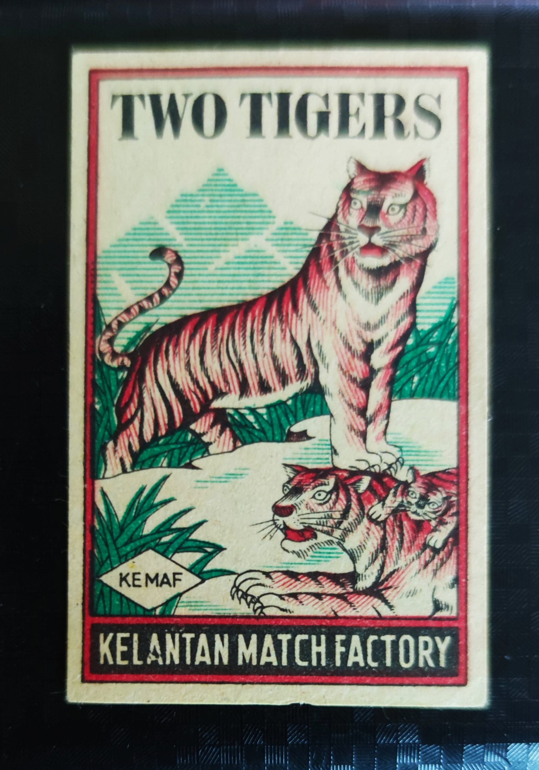 Two Tigers, 35 x 54 mm