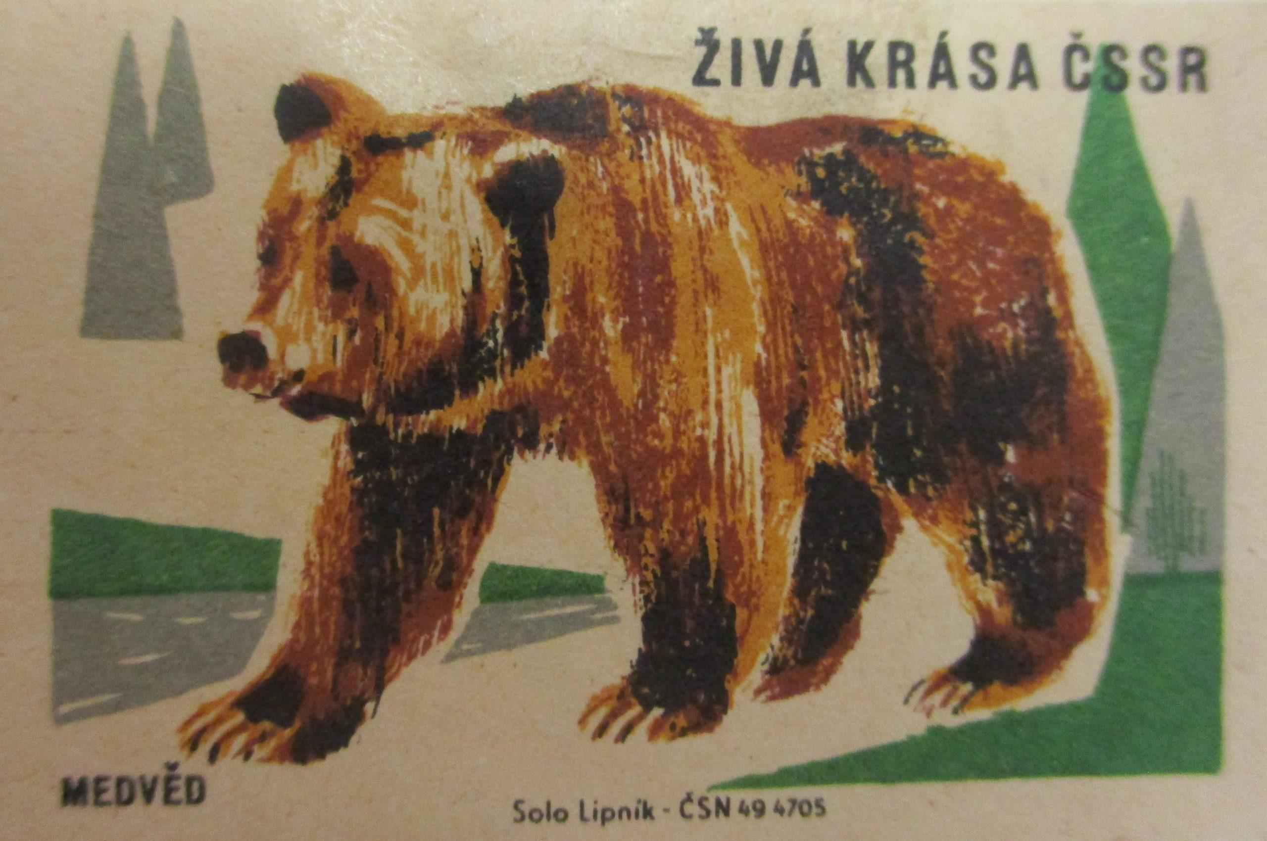Czechoslovakian matchbox label 50 mm x 34 mm ca. 1961